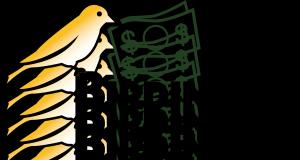 Birding4Buck$ Logo