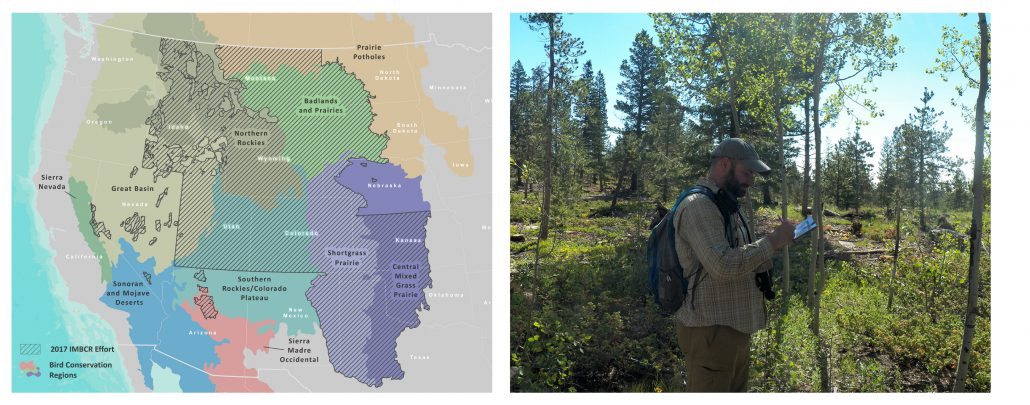 Map of Integrated Monitoring in Bird Conservation Regions coverage and an IMBCR biologist recording vegetation data on a survey.