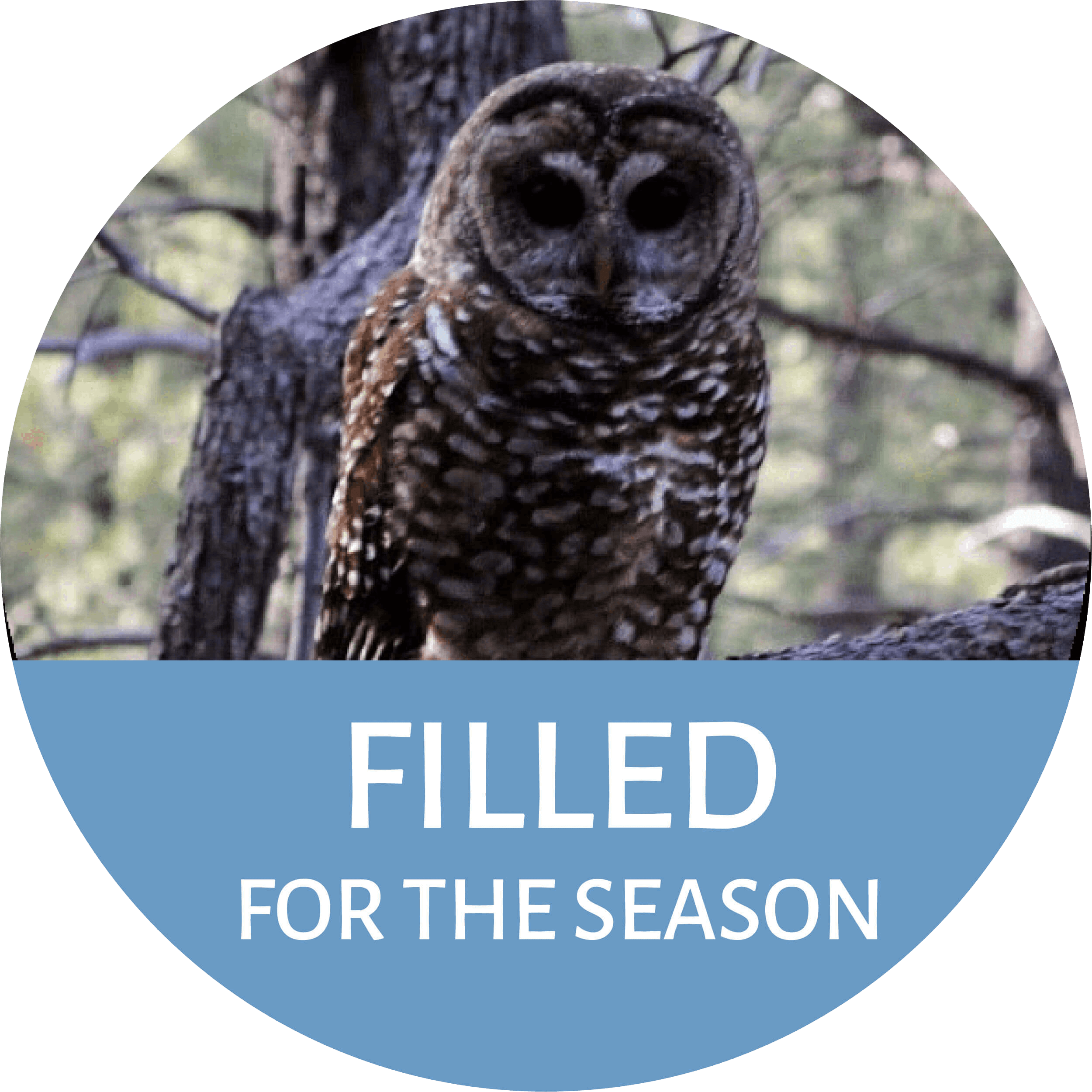 Mexican Spotted Owl Monitoring Program