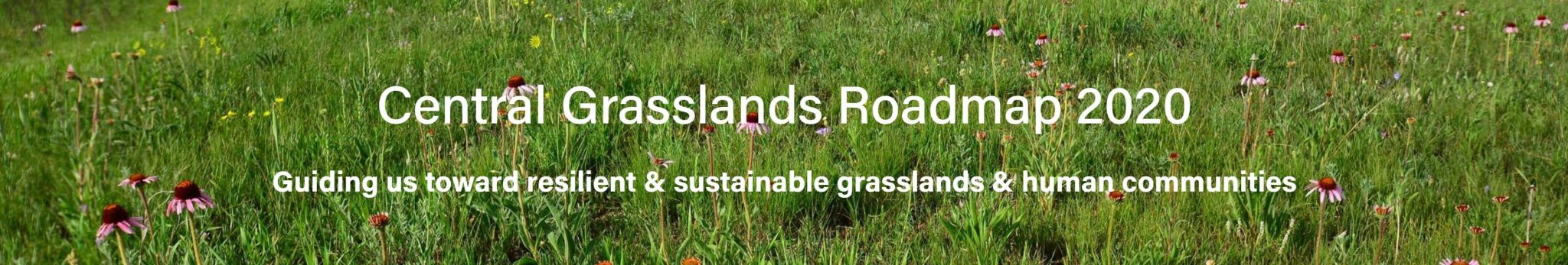 Header Design for Central Grasslands Roadmap 2020