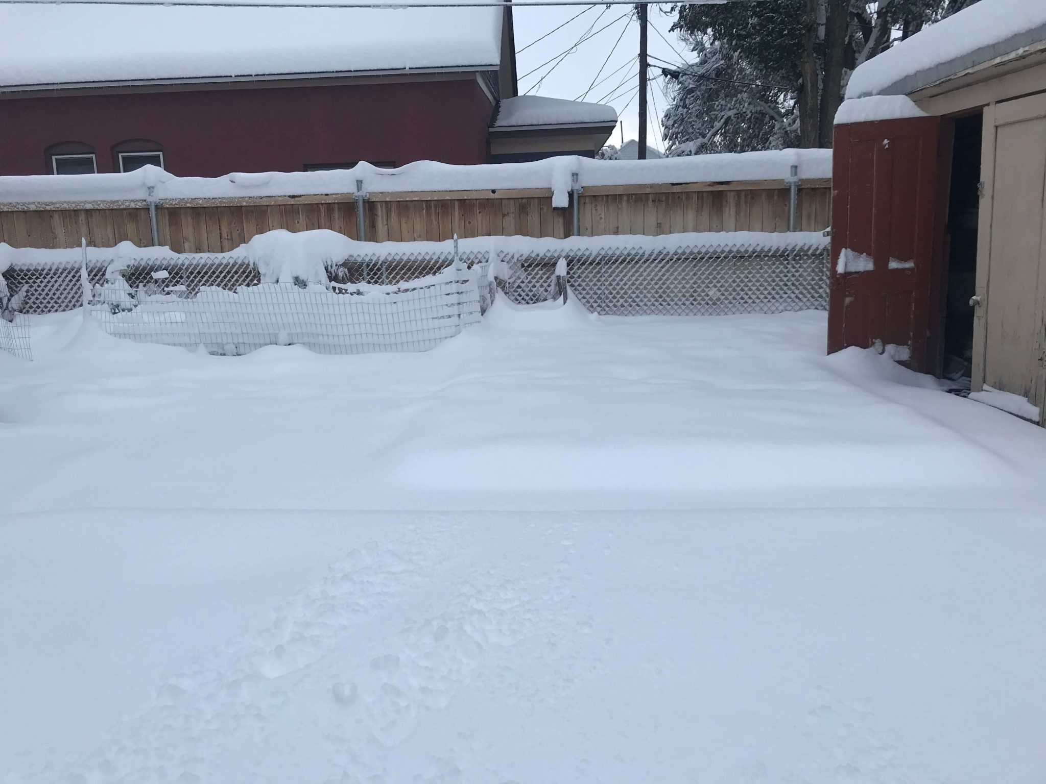 Record breaking snowfall in Alamosa, CO on September 9, 2020
