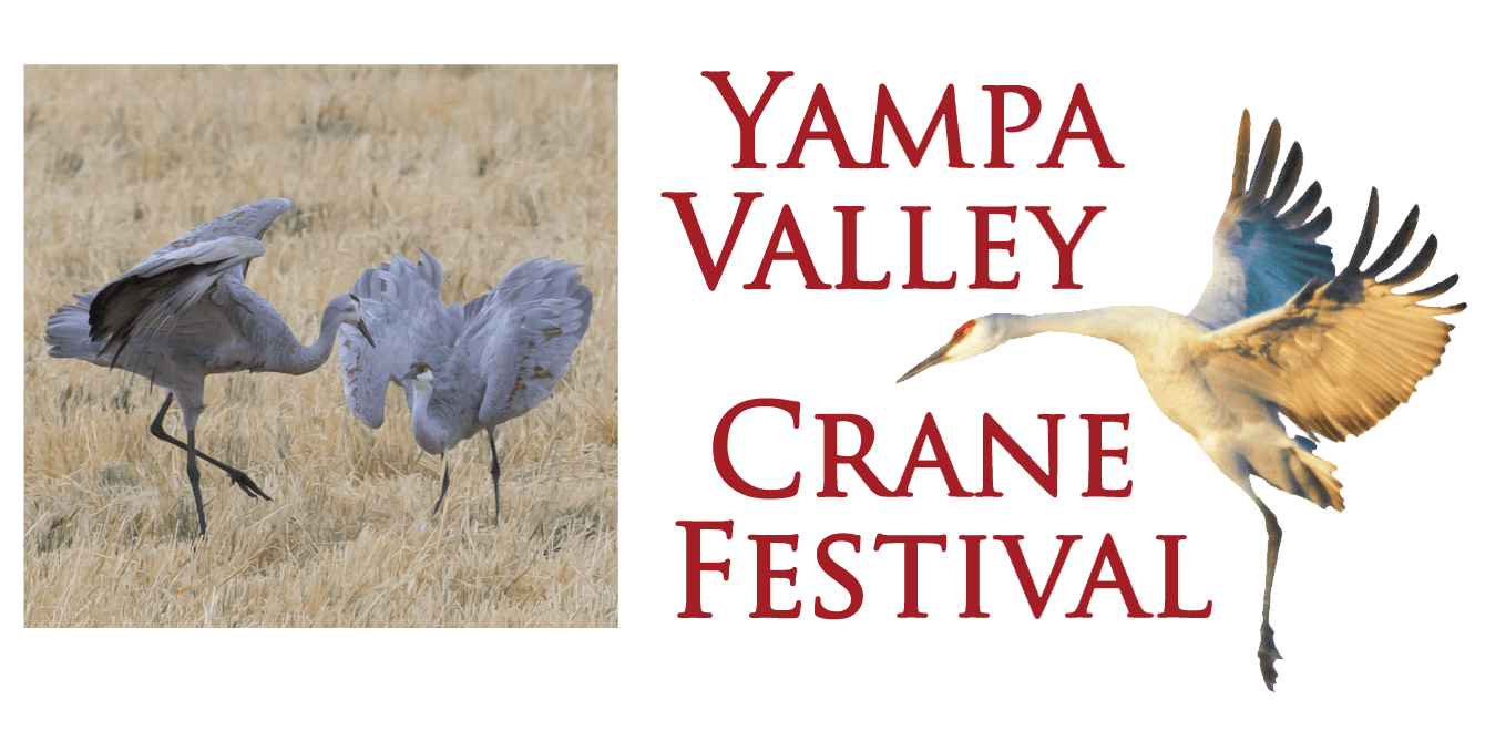 Logo for the Yampa Valley Crane Festival