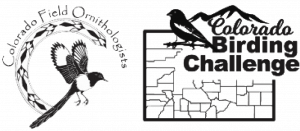 CFO & CBC Logos