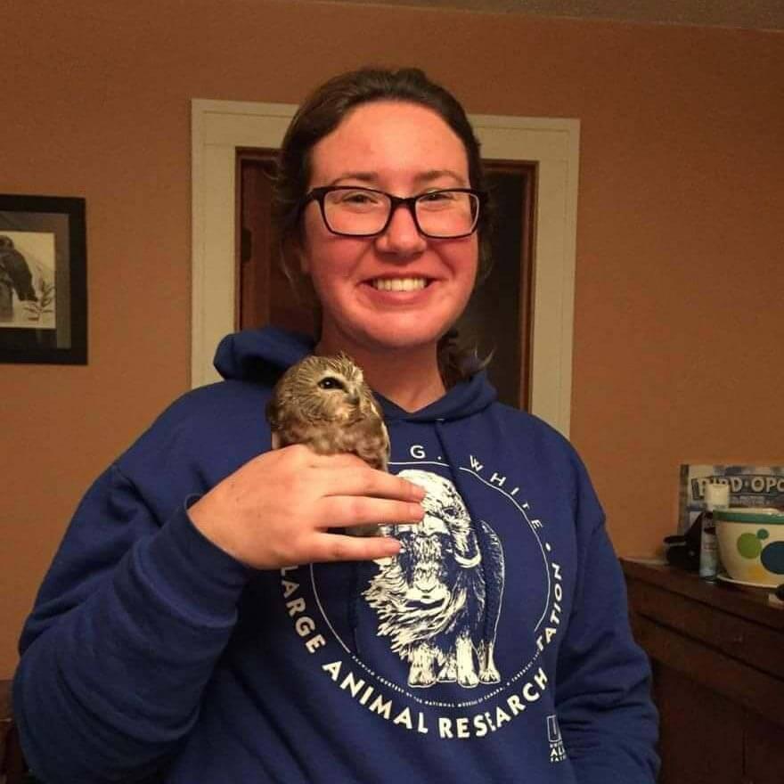 Jenn holding a Saw-whet Owl