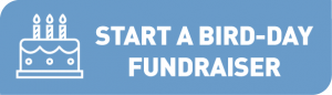 Link button to Bird-Day Fundraiser Page