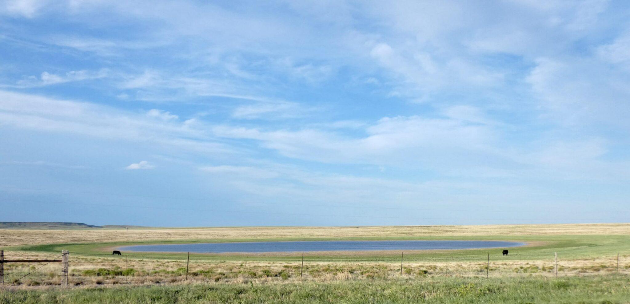 NM playa in grassland credit - Christopher Rustay